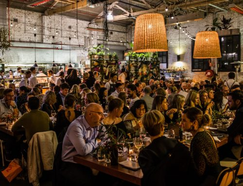 Byron Harvest – A foraged feast raising funds for the rainforest